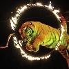 Цирки в Лухе